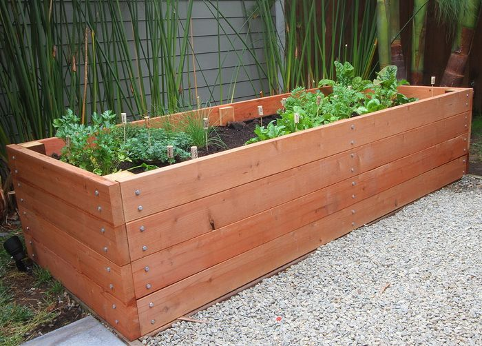 The Advantages of using Planter Boxes