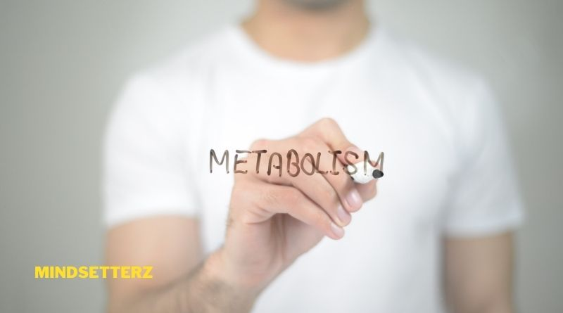 Best Ways to Boost Your Metabolism